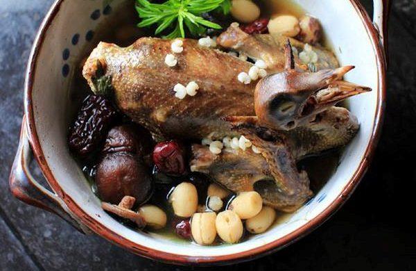 Công dụng của thịt chim bồ câu với sức khỏe con người