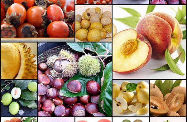 Mẹo nhận biết tính hàn – nhiệt của thực phẩm để bảo vệ sức khỏe
