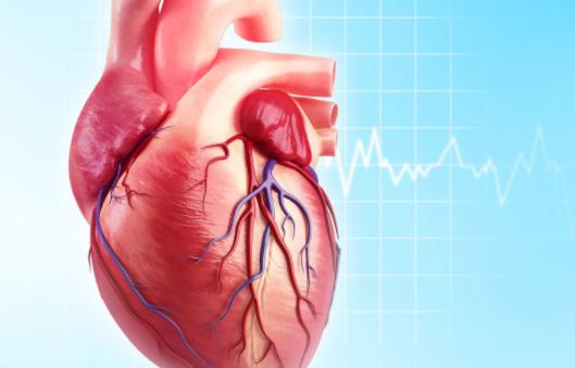 Phục hồi chức năng tim mạch là gì ?